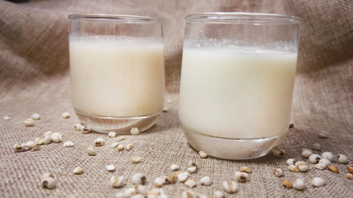 薏仁漿 薏仁牛奶 薏仁漿美白 減肥