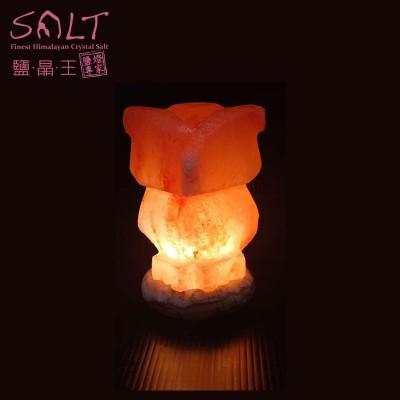 USB貓頭鷹 (2)-min