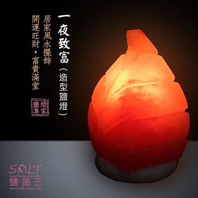 鹽燈專家-鹽晶王 | LINE好友獨享 | 免消費 免費抽 玫瑰鹽(一夜致富)造型鹽燈(定價2200元)。